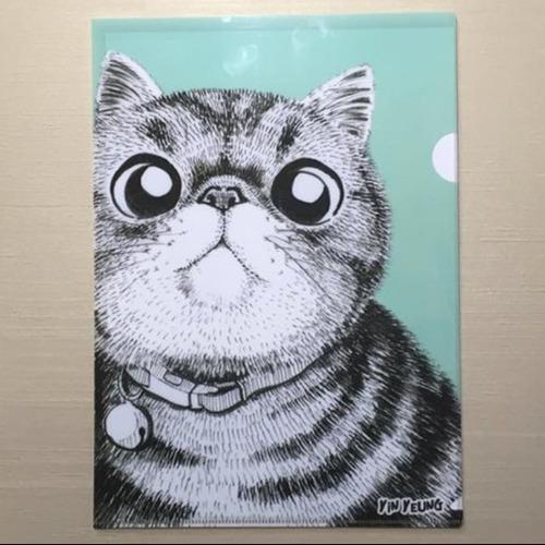 小吉 異短貓 A4文件夾