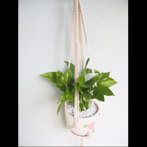 【生活小風景•手工編織植物吊籃•象牙白•平結編織花紋•Long】